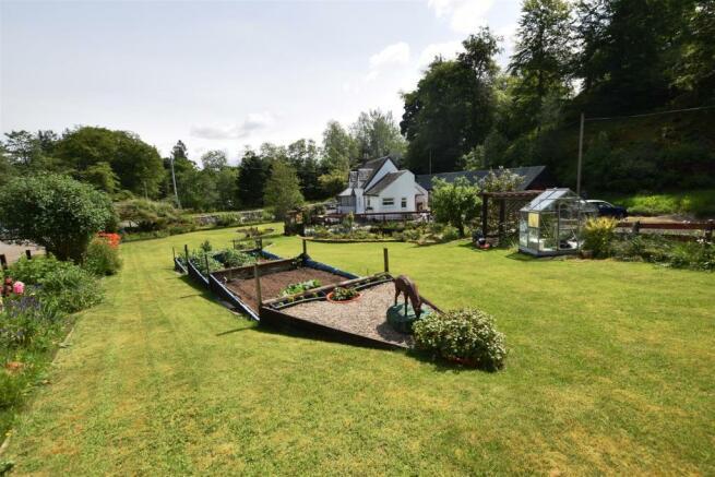 garden 3 .JPG