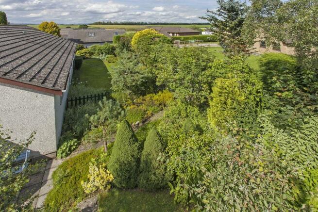 Garden(3).jpg