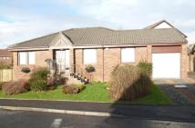 Knockrivoch Place Detached Bungalow to rent