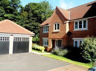 Detached home in Braithwaite Court...