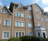 1 bed Apartment to rent in Walnut Close, Laindon
