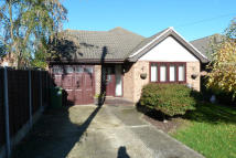 Buller Road Detached Bungalow to rent