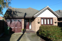 Detached Bungalow in Buller Road, Laindon