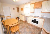 Willmore Street Flat to rent
