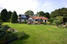 The Lodge Detached Bungalow for sale