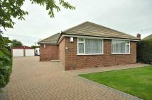 Detached Bungalow in Hollytree Road, Plumley...