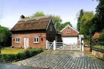 3 bed house to rent in Davenport Lane, Mobberley