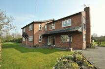 Detached house to rent in Newton Hall Lane...