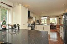 Detached house to rent in Pepper Street, Mobberley