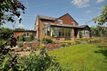 2 bedroom semi detached home for sale in Heath Lane, Allostock