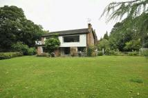 4 bed home in Leycester Drive...