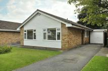 Detached Bungalow to rent in Mereheath Park, Knutsford