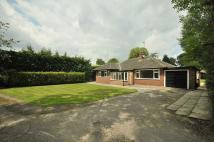 2 bedroom Detached Bungalow to rent in Holmes Chapel Road...