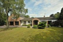 Detached home in New Platt Lane, Cranage