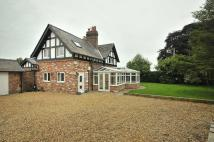 Detached property to rent in Knutsford Road, Chelford...