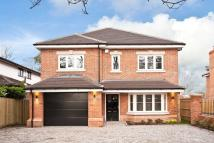 6 bed new property in Chestnut Square...