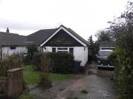 Semi-Detached Bungalow to rent in Tott Yew Road...