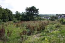 Land in Chittlehampton