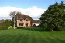 Detached house for sale in Newport