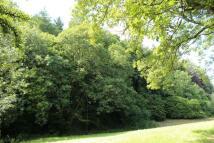 Middle Marwood Land