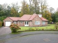 3 bedroom Detached Bungalow in POYNTON PARK ( WARREN...