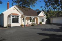 Bungalow for sale in Landkey Road, Barnstaple