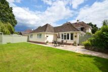 Brockenhurst Detached Bungalow to rent