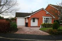 2 bedroom Detached Bungalow to rent in St. Annes Road, Claines...