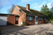 Detached Bungalow in Court Garth, Kempsey...