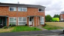 2 bedroom Flat in Checketts Close...