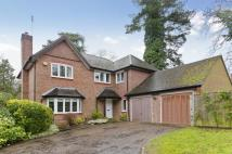4 bed home to rent in Aldersey Road, Guildford...