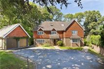 6 bed Detached home in Farnham Lane, Haslemere...