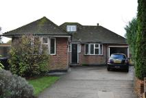 Detached Bungalow in Amberley Close...