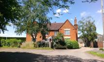 Detached house to rent in High Street, Meppershall...
