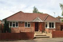 Bungalow to rent in Sherwoods Rise...