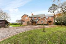 Clare Hill Detached property to rent