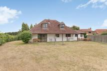 Bungalow to rent in Holme Park Farm Lane...