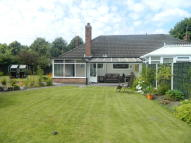 Semi-Detached Bungalow to rent in QUEENS DRIVE, Sandbach...