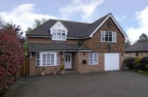 5 bedroom Detached property to rent in The Street, Plaxtol...