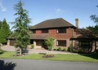 White Friars Detached property to rent