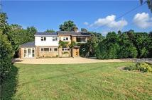 5 bedroom new house to rent in Common Road, Ightham...