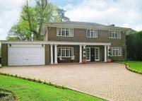 Detached home to rent in Armitage Court, Ascot...