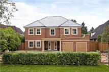 5 bedroom home to rent in Broomfield Park, Ascot...
