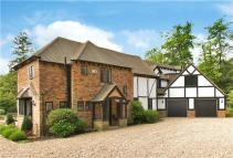 Detached house to rent in Earleydene, Ascot...