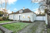 3 bedroom Detached home to rent in Broomfield Park, Ascot...