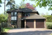 4 bedroom Detached home in The Burlings, Ascot...