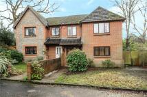 4 bed semi detached property to rent in Rosslea, Windlesham...