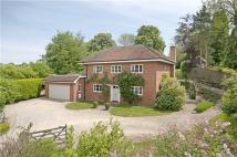 Detached house for sale in Chilbolton, Stockbridge...