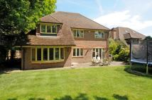 Detached property in St. Leonards Hill...