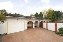 Bungalow to rent in Woodland Avenue, Windsor...